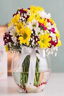 Cam Fanus da Kır Çiçekleri