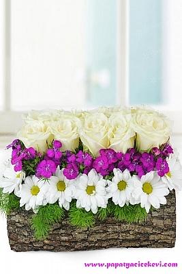 Dekoratif Kütükte Beyaz Güller
