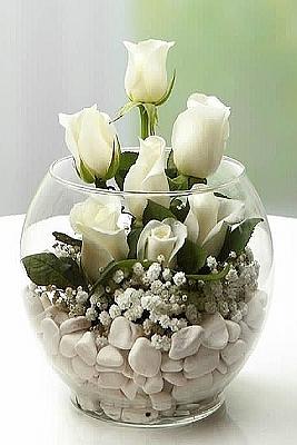Cam Fanus da Beyaz Güller