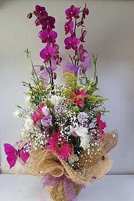 Çiçeklerin İçinde Çift Dal Mor Orkide